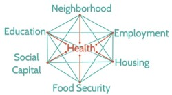 soc det of health web